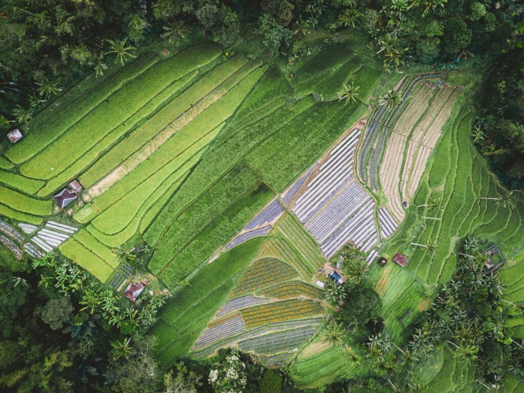 future-of-agriculture